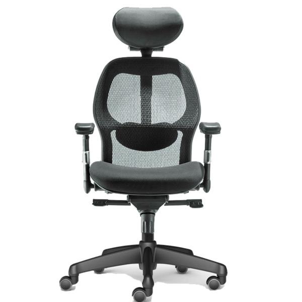 Tigereye Ergonomic Mesh Chair Singapore