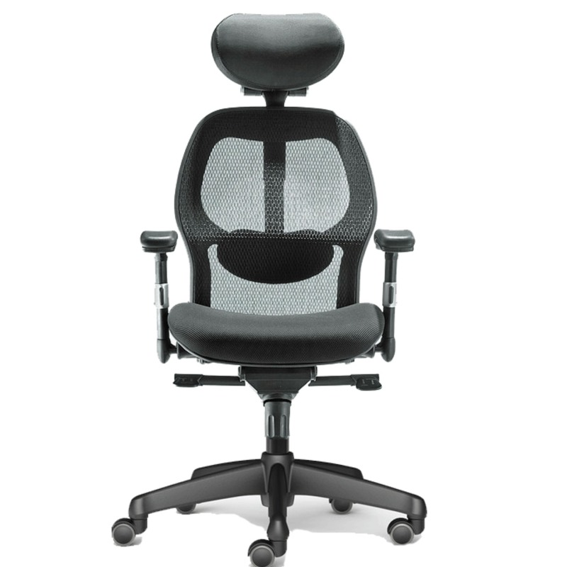 Tigereye Ergonomic Mesh Chair Singapore
