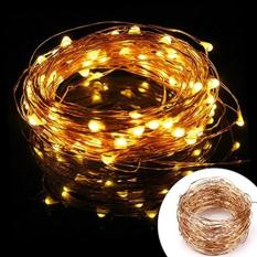 Where Can You Buy 10M 100 Led Battery Operated Copper Wire Fairy Light Warm White
