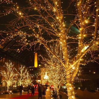 10m 100 LED Copper Wire LED String Light Fairy Lights Warm White
