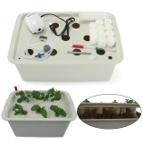 Buy 11 Holes Plant Site Hydroponic System Grow Kit Bubble Tub Dwc Deep Water Culture Intl China