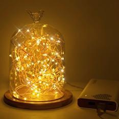 15 Meter 100 Led USB Copper/Silver Wire Fairy Lights (Warm White) (starzdeals)