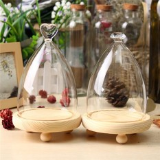 20PCS Glass Display Wooden Base Cloche Bell Jar Dome Flower Immortal Preservation Vase - intl