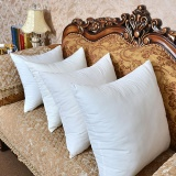 Cheap 2Pcs White Sleep Pillow Insert Pillow Core Cushion Insert Form Vacuum Compression Package 45 45Cm Intl