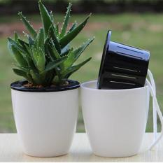 3 Pack Self Watering Planter Automatic Watering Plastic Plant Pot Intl Online