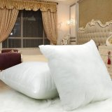 Compare 400G White Cotton Throw Hold Pillow Inner Pads Inserts Fillers Home Bed Sofa Cushion Prices