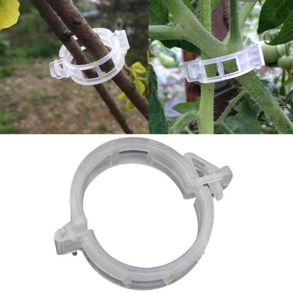 50Pcs Tomato Vine Garden Plant Veggie Stem Support Clips Binder Trellis Twine - intl