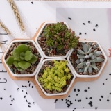 Best Reviews Of 5Pcs Set Modern Trilateral Flowerpot White Ceramic Succulent Plant Pot With Bamboo Stand Bonsai Planter Garden Supply Home Decor Intl