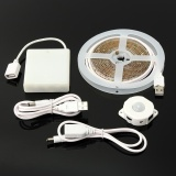 Buy 5V 60 Led Pir Motion Activated Sensor Flexible Night Light Strip Lamp 2M Usb Intl Online