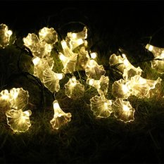 Price Comparison For 8 Lighting Model Indoor And Outdoor 20Ft 6M 30 Led Morning Glory Battery Opetated String Fairy Waterproof Lights Christmas String Lights With 13 Key Remote Control For Garden Patio Yard Home Christmas Tree Intl