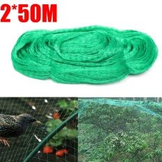 Sale Anti Bird Netting 2X50M Allotment Crop Plant Protection Net 15Mm Diamond Mesh Green Intl Online China