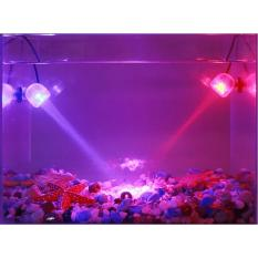 Buy Aquarium Led Spotlight Rgb Fish Tank Submersible Light With Remote Control Intl Dodo