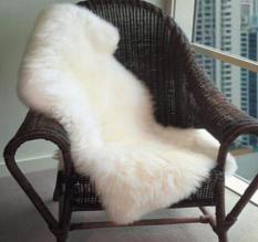 For Sale Australian Faux Wool Household Carpet