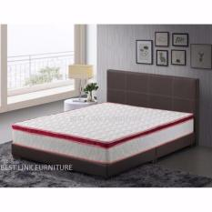 Where Can You Buy Best Link Furniture Blf Divan Bed 10 Inch Spring Mattress Queen