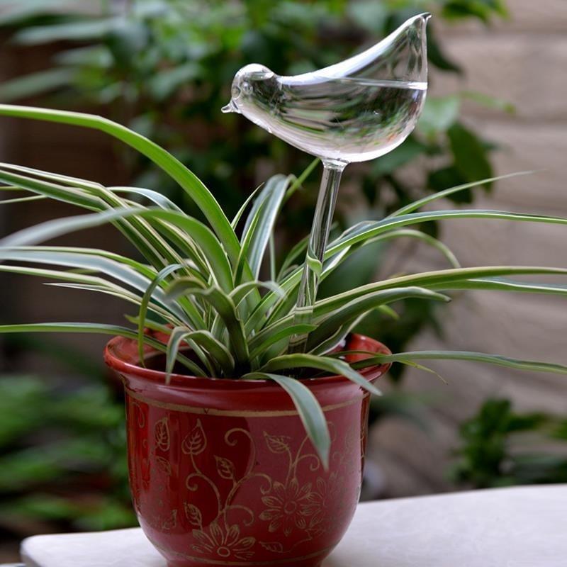 Bird Glass Watering Flower Planter Vase Terrarium Container Home Garden Decor - intl
