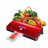 Recent Convenient Deluxe Automatic Kitchen Food Sealer Machine Vacuum Sealing System Intl