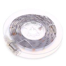 Buy Dc 5V 2 5W 200Lm 1 5M 45 Leds Strip Light Waterproof Bedside Motion Sensor Lamp 1 5M White Intl