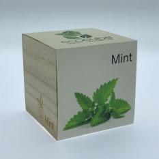 Cheap Ecocube Plant Mint