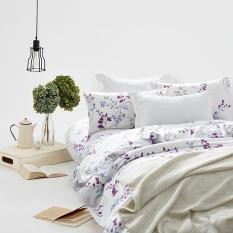 Discount Ekohome Printed Design 772 Domus 880 Treadcount Comforter Set Domus