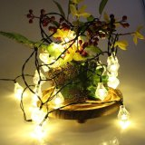 Buy Er Chen 30Led 6M Waterproof Decorative Diamond Led String Lights Outdoor Garden Patio Lantern Indoor Party Decoration Lightings Intl Cheap China