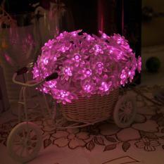 Er Chen 6M 60 Leds Battery Powered Lotus Flower String Lights Outdoor Christmas Decoration Fairry Lights Intl Er Chen Cheap On China