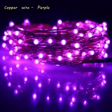 Buy Erchen 10M 100Led Copper Led String Light With 12V1A Uk Plug Adapter For Decoration Garden Fairy Lights Purple China