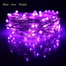 Erchen 10M 100Led Silver Wire Led String Light With 12V1A Uk Plug Adapter For Decoration Garden Fairy Lights Purple Coupon