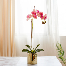 Artificial Butterfly Orchid with pot