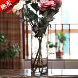 Floor Hydroponic Table Dried Flowers Living Room Ornaments Glass Vase Price Comparison