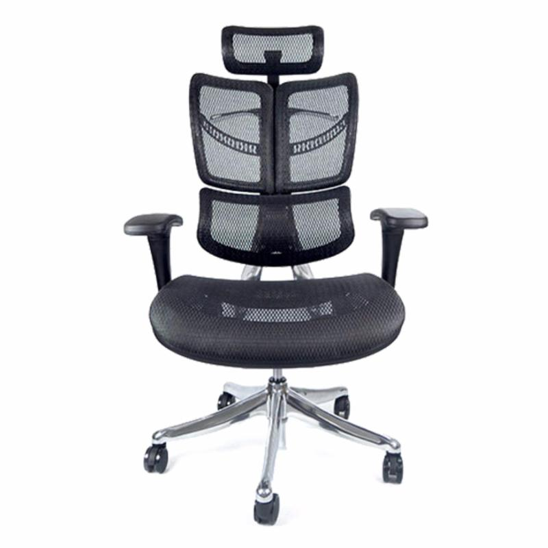 FLY Luxury Ergonomic Office Chair (Black) Singapore