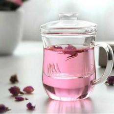 Buy Glass Tea Cup Model G2