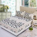 Gogolife Soft Cotton Fitted Bed Sheet 28 Leaf On China