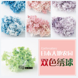 Buy Two Tone Diy Earth Farm Hair Small Leaves New Dried Flowers Hydrangea On China