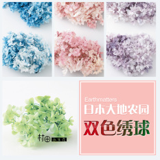 Where Can I Buy Two Tone Diy Earth Farm Hair Small Leaves New Dried Flowers Hydrangea