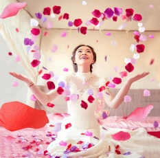 huaxian 1000pcs Silk Rose Petals For Wedding Party Decoration Heart Shaped Artificial Flower Favors Romantic Home Decor, Roseo+White - intl