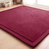 Japanese Premium Living Room Carpet Mats Wine For Sale Online