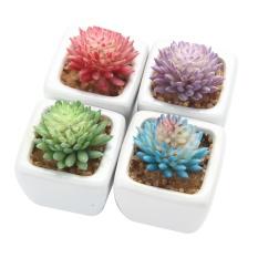 jiechuan Set Of 4 Modern White Ceramic Mini Flocking Echeveria Chihuahuaensis Potted Artificial Succulent Plants - intl