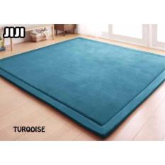 Jiji 180 X 200 Cm Floor Carpets Japan Coral Velvet Floor Carpet 180 X 200 Cm Carpet Lowest Price