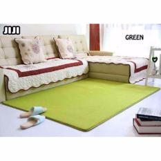 JIJI 140 x 200 Cm Floor Carpets: Japan Non Skid Water Absorbent Carpet 140 x 200 Cm (Carpet)