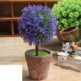 Promo Joy Potted Plants Pjoyple Intl