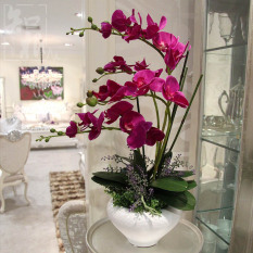 Review Known Root High Potted Living Room Butterfly Orchid Suit Furnishings Vase Oem