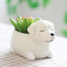 Kobwa Cute Animal Shaped Home Decoration Succulent Vase Flower Pots Cartoon Desktop Flower Pot Sleeping Pet Design(Labrador) - intl