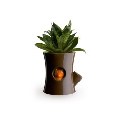 Cheapest Qualy Log Squirrel Self Watering Plant Pot Brown Green