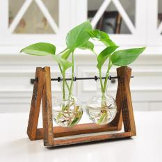 LumiParty Creative Plant Glass Hydroponic Container Terrarium Desk Decor with Wood Stand Flower Pot Home Decoration Size:2 glass balls