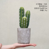 Mo Ge Simulation More Meat Fake Potted Artificial Plants Cactus Deal