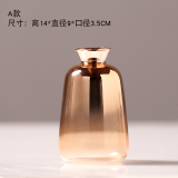 Review Modern Minimalist Gold Gradient Electroplated Hydroponic Vase Oem On China