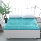 Review Modern Simple Anti Mite Antibacterial Foldable Mattress Intl China
