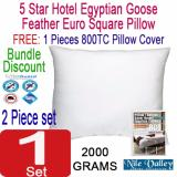 Buy Nile Valley S Egyptian Cotton Goose Feather Euro Bed Pillow 65 X 65 Cm With Free Cover Online Singapore