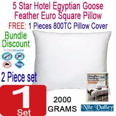 Best Offer Nile Valley S Egyptian Cotton Goose Feather Euro Bed Pillow 65 X 65 Cm With Free Cover