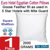 Price Nile Valley S Egyptian Cotton Goose Feather Euro Square Pillow As Used In 5 Star Hote Nile Valley Online
